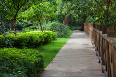 Wooden footpath throught garden Royalty Free Stock Photo