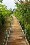 Wooden Footpath Stock Image