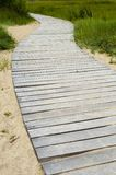 Wooden footpath trough the dunes at the beach stock photos