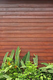 Wooden Forefront with Plants. Red brown lath wall with fresh green plants and flowers in the foreground. Space for additional text in the upper half. Vertical stock images