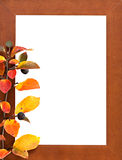 Wooden frame. Empty wooden frame with autumnal red-yellow branch Royalty Free Stock Photography