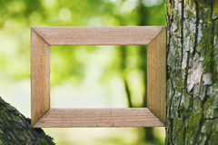 Wooden frame against a green blurred natural background. Empty space for text. Connecting with nature concept. Wooden frame against green blurred natural royalty free stock image