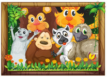 A wooden frame with animals Stock Photography