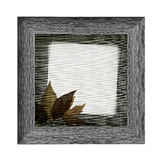 Wooden frame with autumn leaves Royalty Free Stock Photography