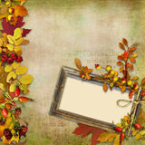 Wooden frame with autumn leaves and berries on a vintage background Royalty Free Stock Photo