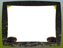 Wooden frame from the bark Stock Photo