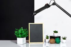 Wooden frame with black place for text. Mock up. Stylish room interior. Green plant in a white pot on black-white wall. Background. Copy space royalty free stock photography