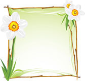 Wooden frame with daffodils Stock Images