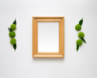 Wooden frame with empty space. Stock Photography