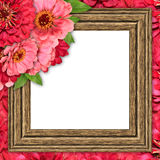 Wooden frame with flowers Stock Images