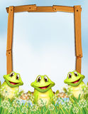 Wooden frame with frogs background Royalty Free Stock Photo