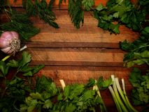 Wooden frame with garlic and green onion with parsley, dill Stock Photos