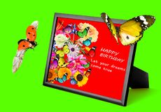 Wooden frame with gorgeous colorful flowers and Greeting words. Happy Birthday. Let your dreams come true. Lovely butterfly and la