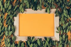 Wooden frame and green leaves background stock photography