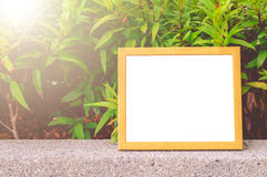 Wooden Frame Green Leaves Background. Wooden Frame For Quote On Green Leaves Background Royalty Free Stock Photo