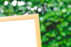 Wooden Frame Green Leaves Background Royalty Free Stock Photo