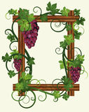 Wooden frame with leafs and grapes Stock Images