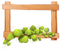 A wooden frame with a leafy plant Stock Photos