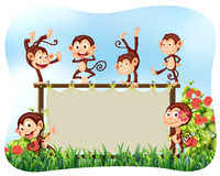 Wooden frame with monkeys Stock Photos