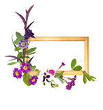 Wooden frame with purple flowers Royalty Free Stock Image