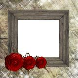 Wooden  frame and rose Stock Photography