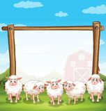 Wooden frame with sheeps in the farm. Illustration Royalty Free Stock Images