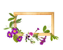 Wooden frame with summer flowers Stock Photos