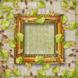 Wooden frame with vine Royalty Free Stock Photography