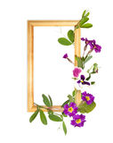 Wooden frame with violet flowers Stock Photos