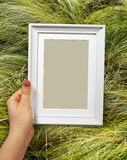 Wooden frame in woman hands on the background feather-grass Stock Photo