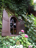 Wooden framed window with shutter. Surrounded by ivy and other plants Royalty Free Stock Photo