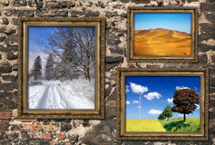 Wooden frames with beautiful landscapes Stock Image