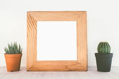 Wooden frames with cactus. On table royalty free stock photography