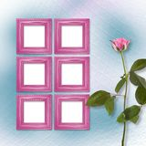 Wooden frames for photo with pink beautiful rose Stock Photography