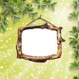 Wooden framework for portraiture Royalty Free Stock Images