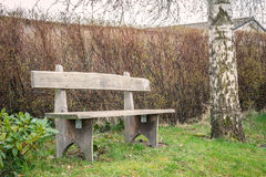 Wooden garden bench in the spring. In the daytime Stock Photo
