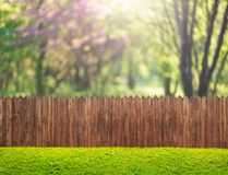 A wooden garden fence at backyard and bloom tree in spring royalty free stock photography