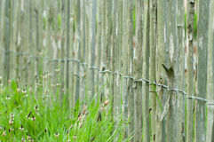 Wooden garden fence. Detail of a wooden fence in a garden Royalty Free Stock Photography