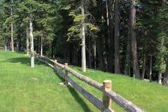 Wooden garden fence Stock Photography