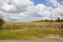 Free Wooden Gate And Oilseed Rape Crop Royalty Free Stock Photo - 95920595