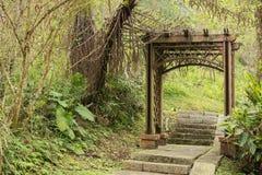Wooden gate door Stock Images