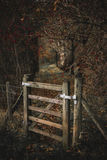 Wooden Gate to Beautiful Path Royalty Free Stock Photos