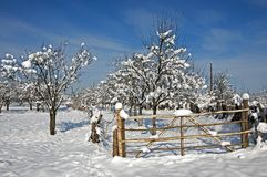 Wooden gate to snowy orchard Stock Images