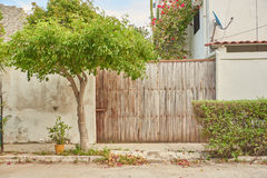 Wooden gate and tree. Wooden gate and green bushes and tree Stock Photography
