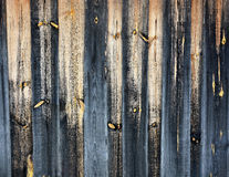 Wooden gates Stock Image