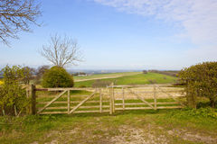 Wooden gates and vale of york. Wooden farm gates with trees overlooking the vale of york on a sunny springtime day in the yorkshire wolds Royalty Free Stock Image