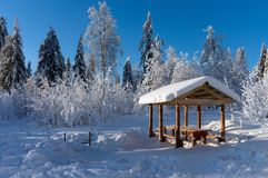 Wooden gazebo in the forest in winter sunny day Stock Images