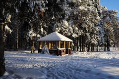 Wooden gazebo in forest in winter sunny day Stock Images