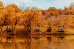 Gazebos and weeping willows on the lakeshore in  a clear sunny autumn day and their reflection in the lake. Wooden gazebos and weeping willows on the lakeshore royalty free stock image
