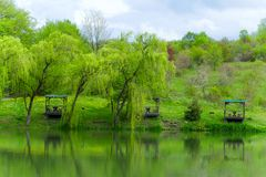Wooden gazebos and weeping willows on the lakeshore in a clear sunny day. Wooden gazebos and weeping willows on the lakeshore in  a clear sunny day and their stock photo